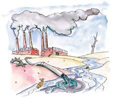 Impacto ambiental contaminaci n del agua for Peces de agua fria para consumo humano