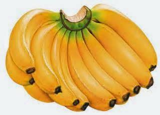- jenis-jenis pisang yang dah pupus -