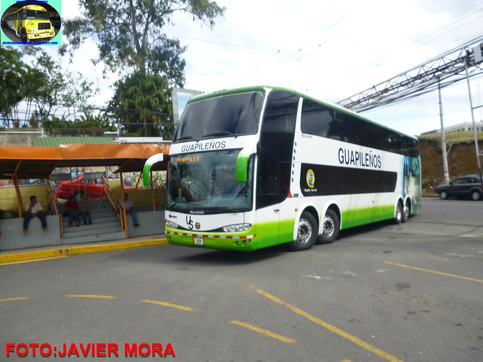 buses de mi tierra  marcopolo do brazil