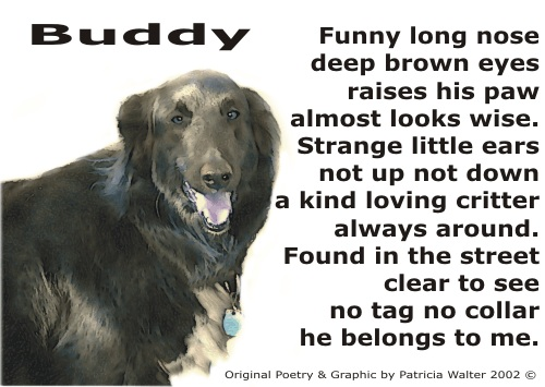 funny dog poems