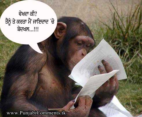 ... and Punjabi Photos : FUNNY STATUS COMMENT PUNJABI FOR FACEBOOK