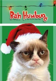 Grumpy Cat Bah Humbug