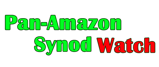 AMAZON SYNOD WATCH