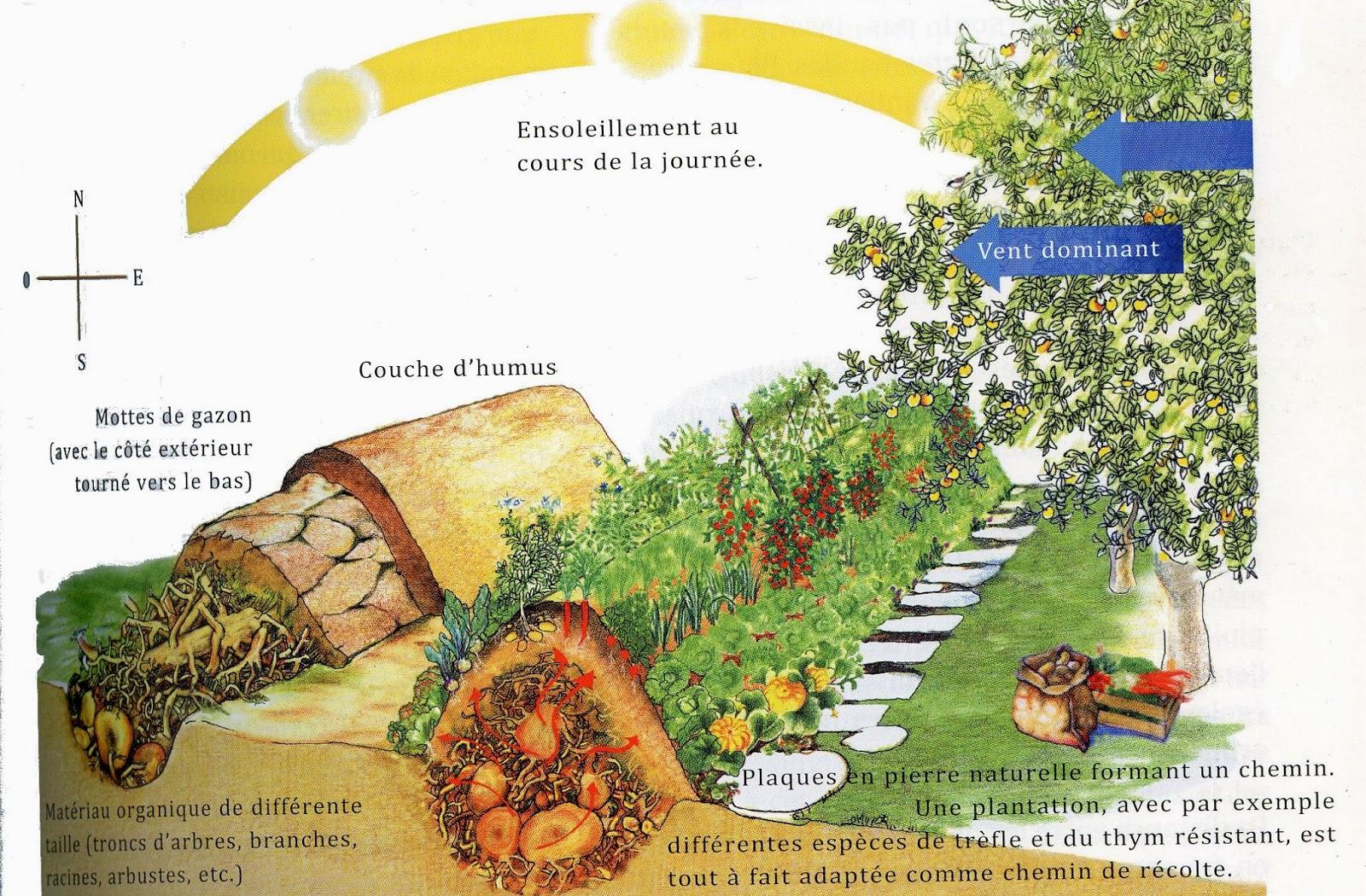 incroyables comestibles castres techniques et avantages de la culture sur buttes