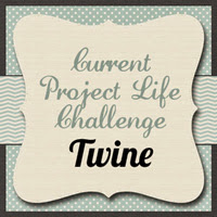 SOUS PROJECT LIFE CHALLENGE June 17th ~ June 30th