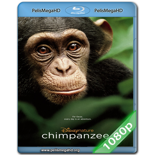 CHIMPANZEE (2012) 1080P HD MKV ESPAÑOL LATINO