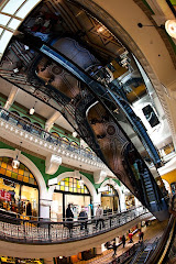 QVB fisheye