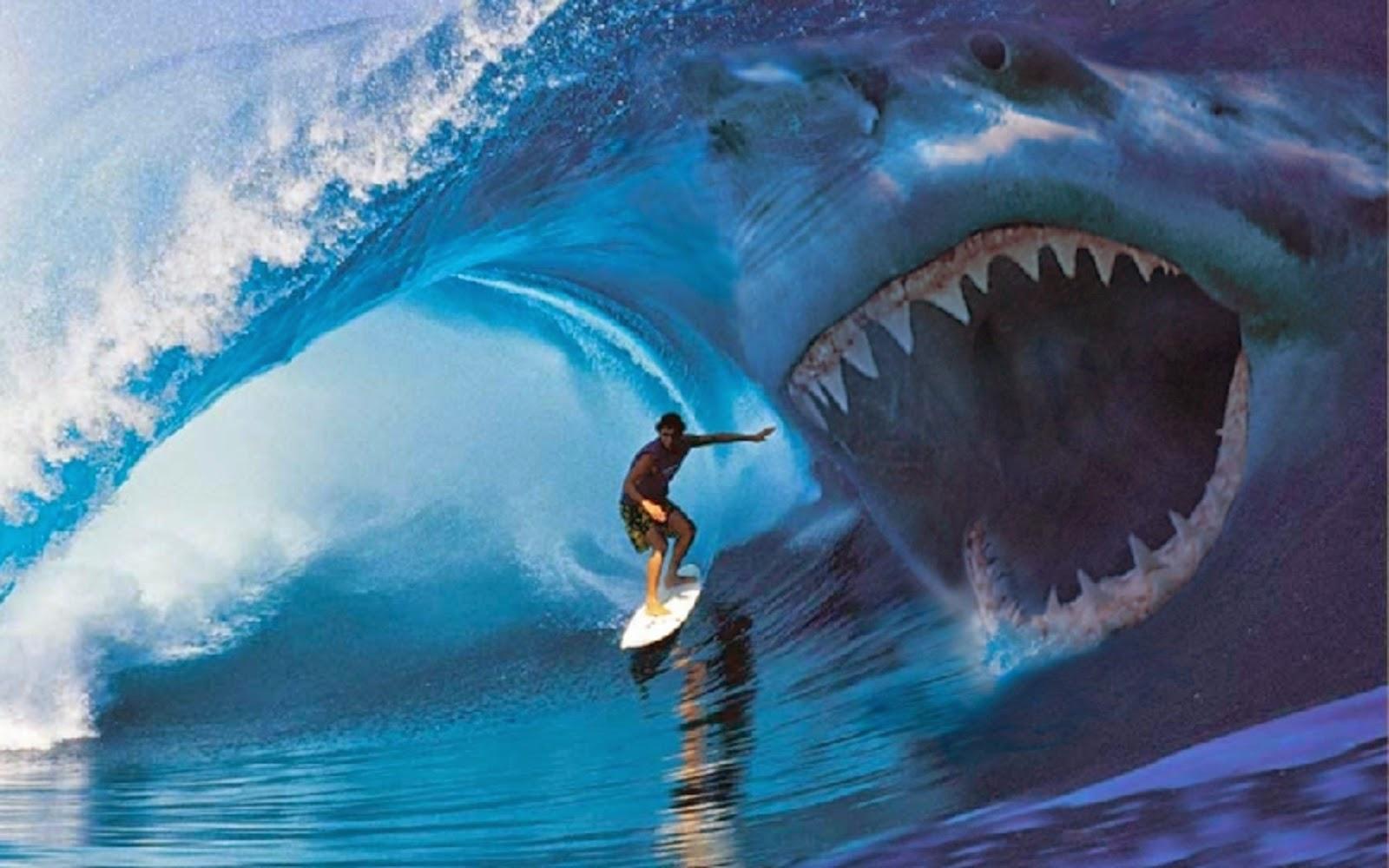 Biggest Shark In The World Megalodon ...