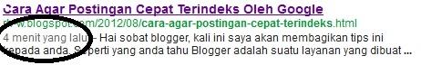 cara membuat blog cepat terindeks oleh google