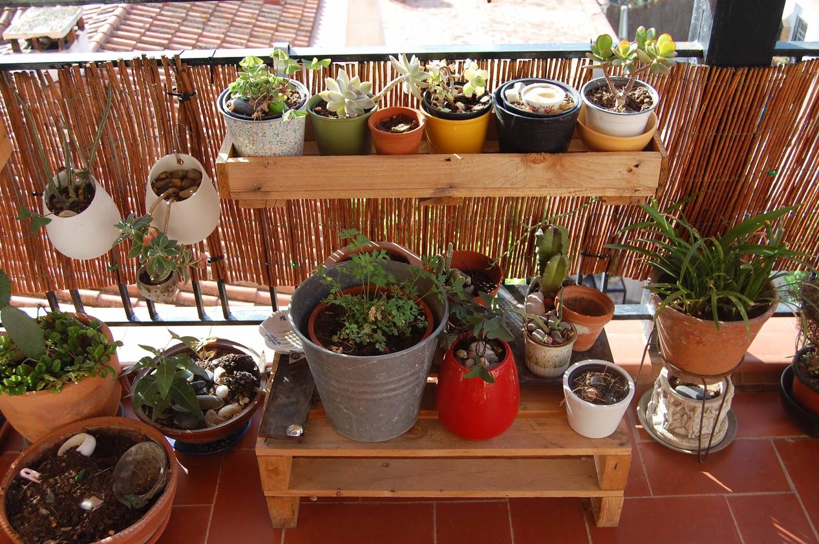 Jardineras hechas con palets idea de cesmots para hacer - Macetas hechas con palets ...