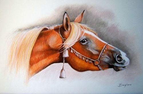 Pferdekopf, Pastellzeichnung auf Karton