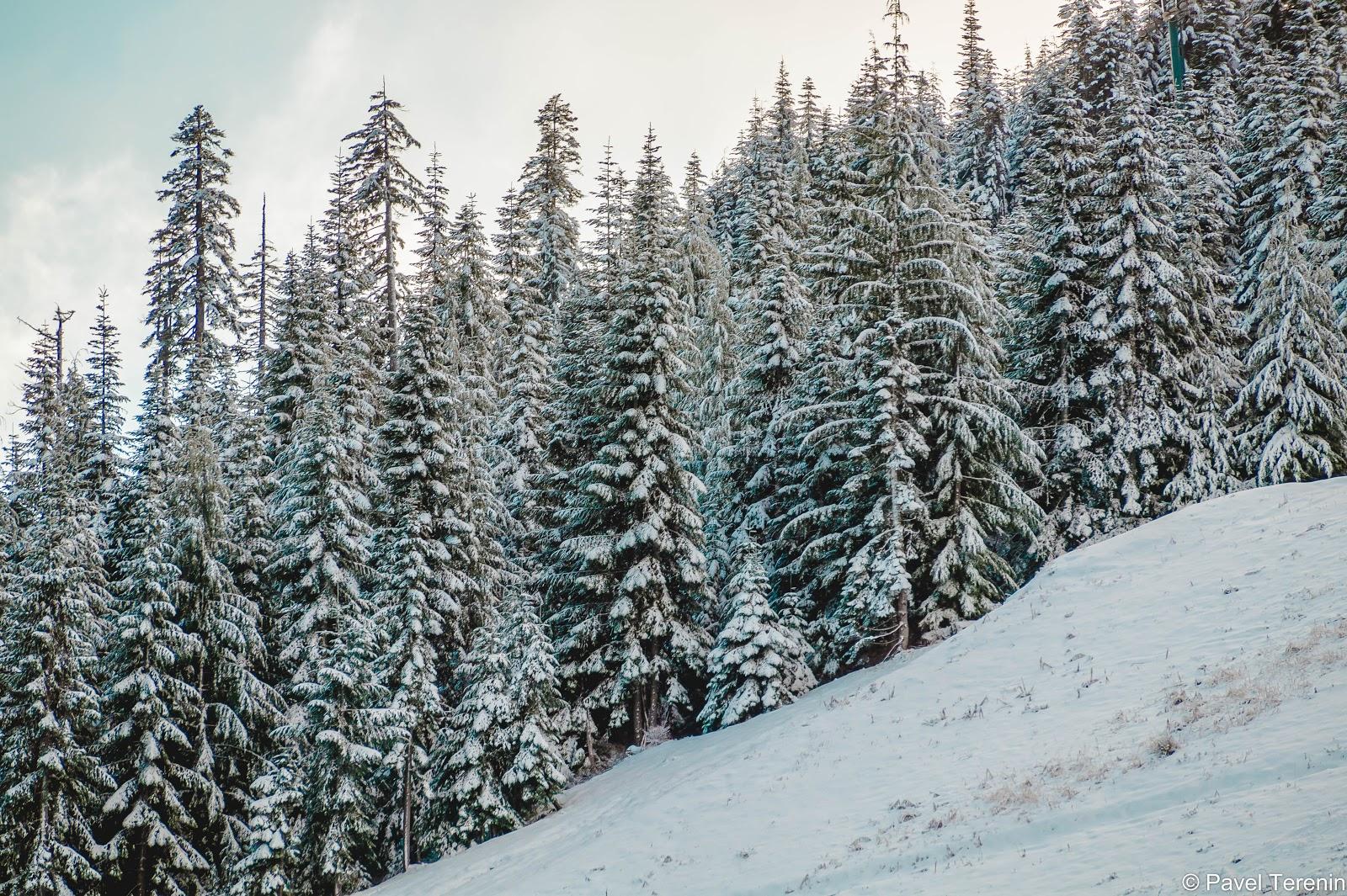 Расстояние от осени до зимы преодолевается за 10 минут по дороге-ленте до парковки горнолыжного комплекса.
