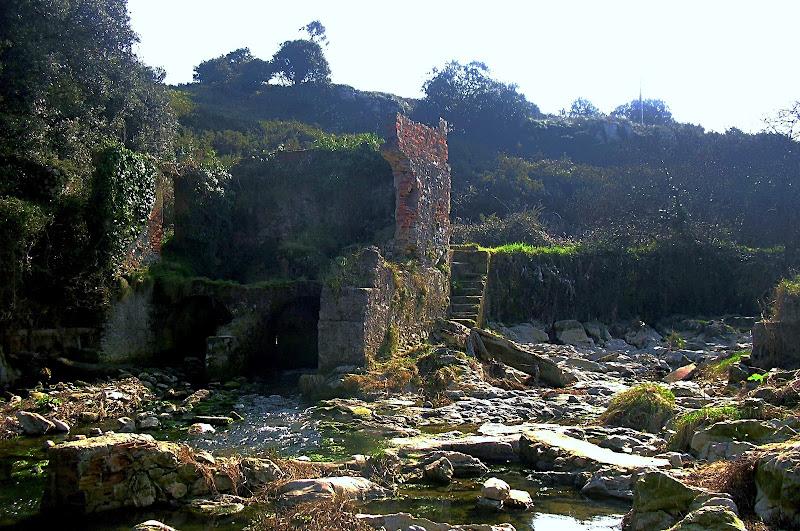 Molino de San Juan de la Canal