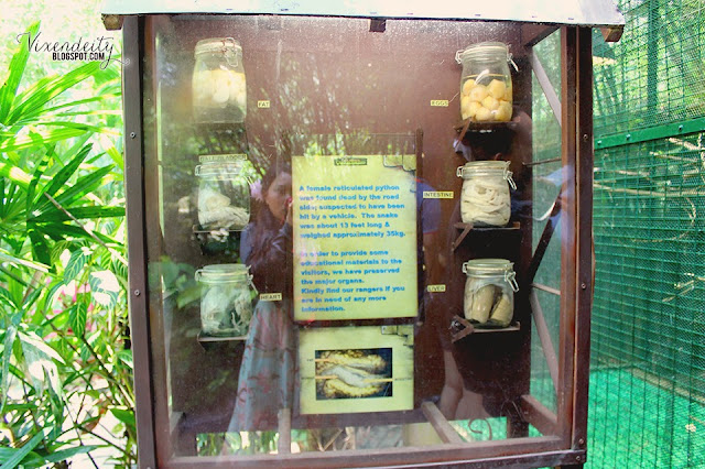 Lost World of Tambun Petting Zoo Serpentarium info