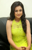 Actress Mishti Chakraborty Picture Gallery in Long Dress at Chinnadana Nee Kosam Audio Launch freshgallery.in33.jpg
