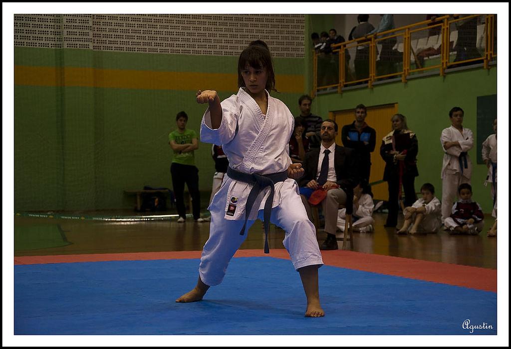 Karate navarra 2011 03 14 2 jornada kata jjdd alev inf for Gimnasio kanku