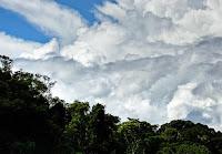 Clouds over tropical rainforest in Madre de Dios, Peru. (Image Credit: Oscar de Lama via Flickr) Click to Enlarge.