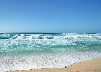 Ocean Beauty Pictures