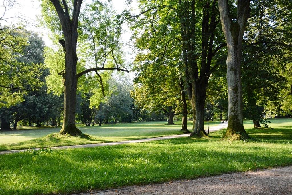 Bad Homburg, Park, Deutschland, Frankfurt Umgebung