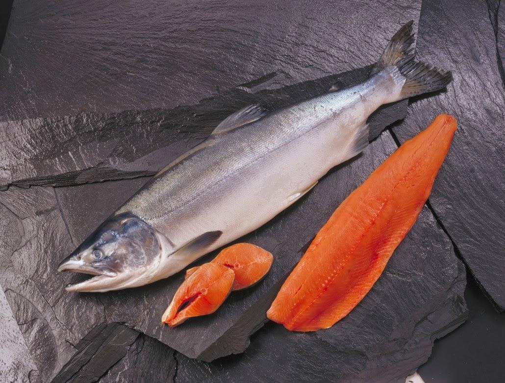 wild alaska salmon