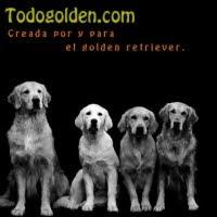 TODOGOLDEN