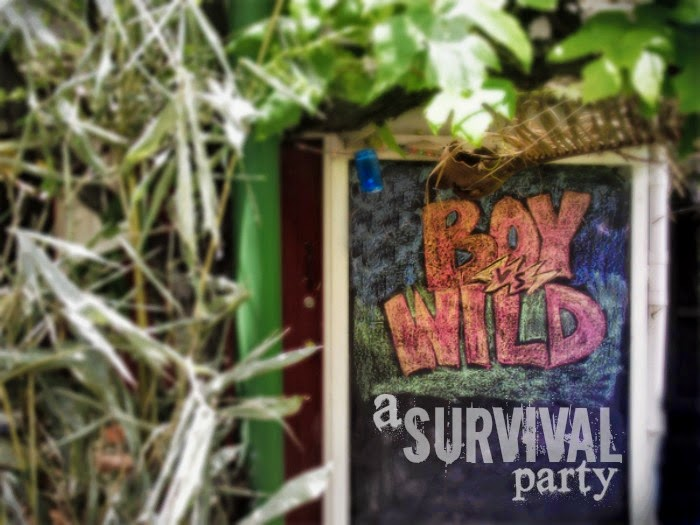 Survival in the wild tv series