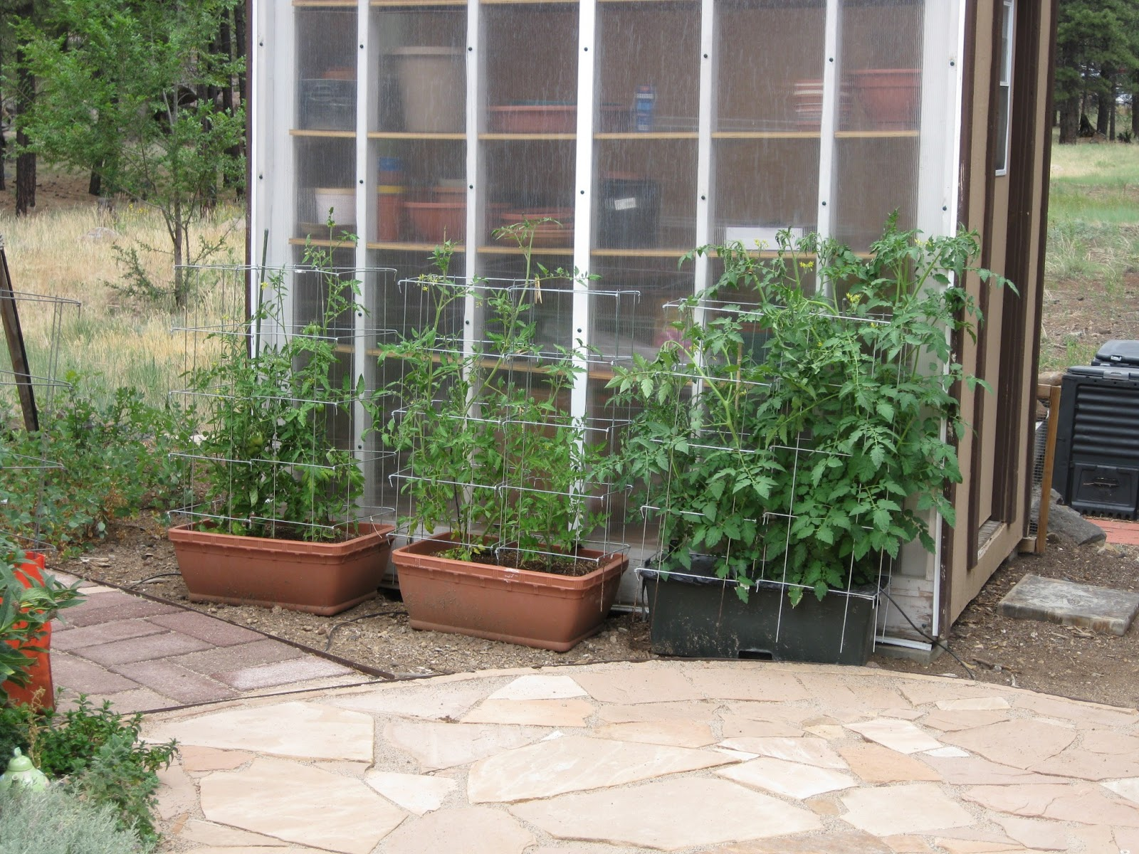 Container Gardening Blog Raised Beds At Olivia White Gardens