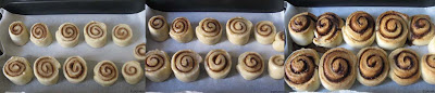 rolled cinnamon rolls before and after baking