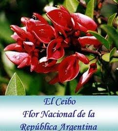 El Ceibo-Nuestra Flor Nacional Argentina