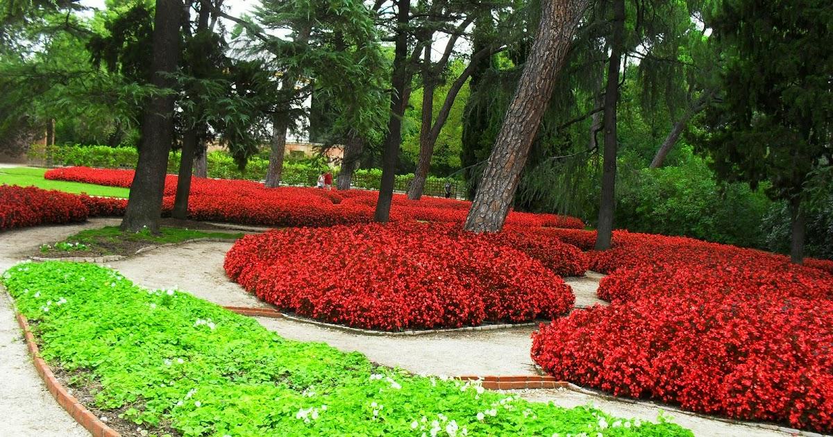 Arte y jardiner a dise o de jardines plantas tapizantes o - Jardines y plantas ...