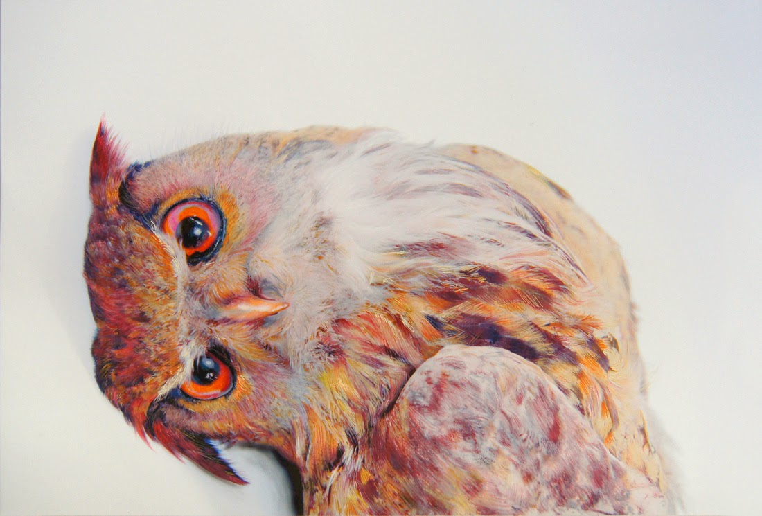 Creative Beautiful Drawings Drawings of Beautiful Owls