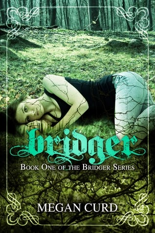 https://www.goodreads.com/book/show/11550178-bridger