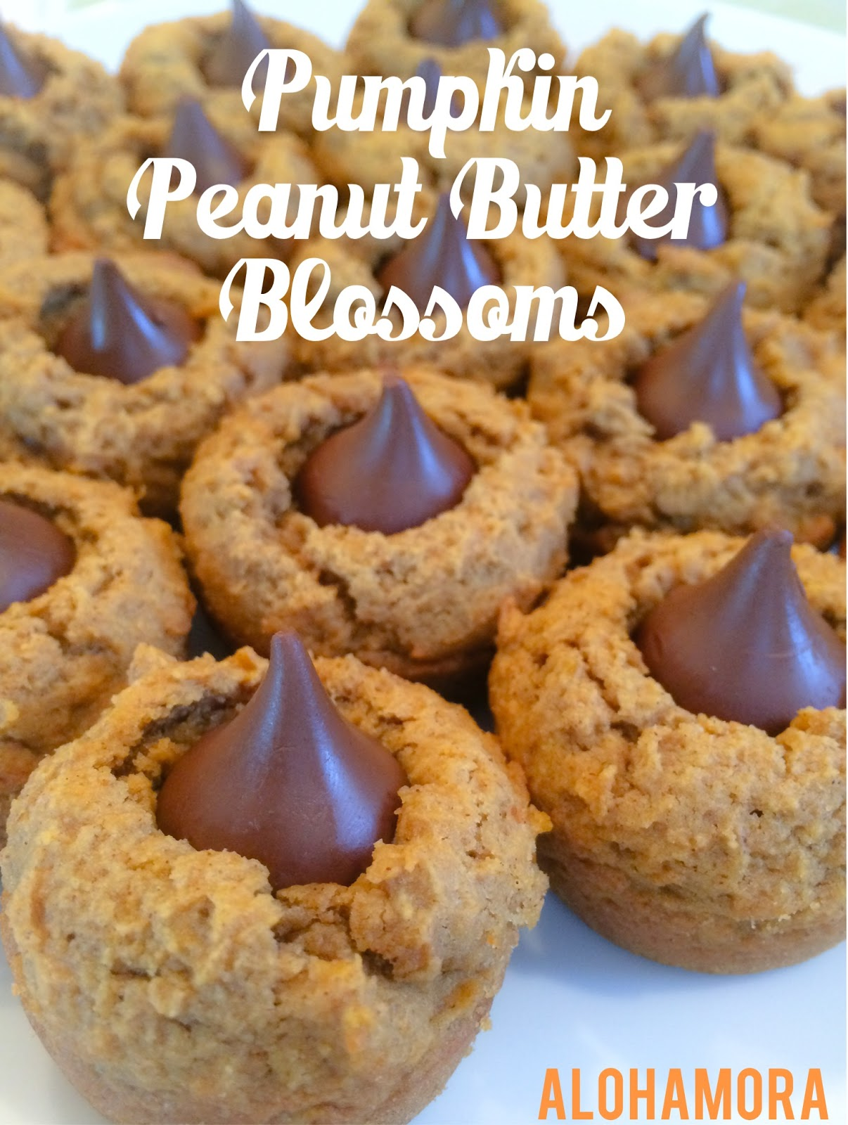 Pumpkin Peanut Butter Blossoms.  Pumpkin and Chocolate tastes good as well as peanut butter and chocolate.  Therefore pumpkin, peanut butter and chocolate is a surprisingly delicious combination.  These cookies or bites are amazing; they stay soft for at least a week. Alohamora Open a Book http://alohamoraopenabook.blogspot.com/