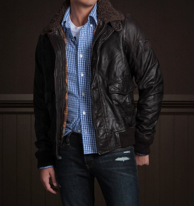 Hollister palm canyon leather jacket