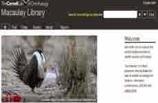 Sonidos de animales online: la mayor colección de audios y videos de la biodiversidad mundial