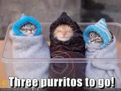 Brrrr.... Está frío Buenos Aires!!!