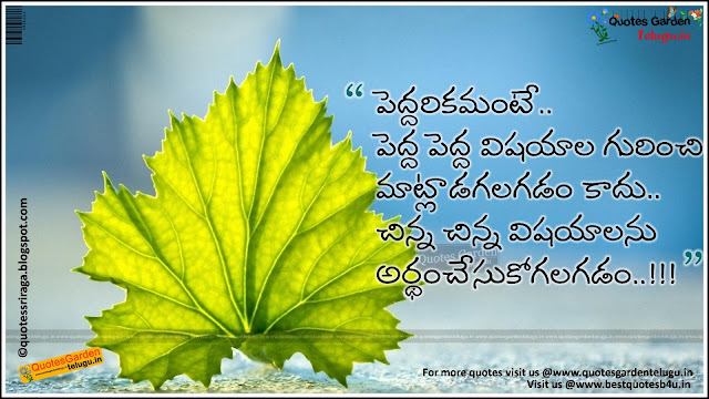 Best telugu quotes about understanding and maturity