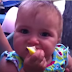 Babies Eating Lemons for First Time Compilation