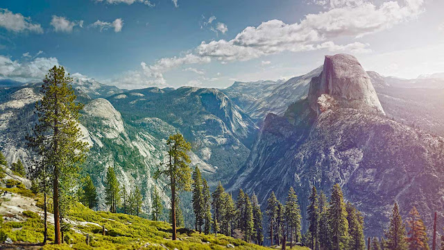 Yosemite National Park, California (© James O'Neil/Getty Images) 681