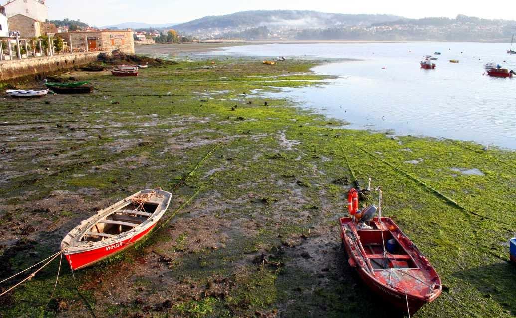 Barcas ancladas por la marea