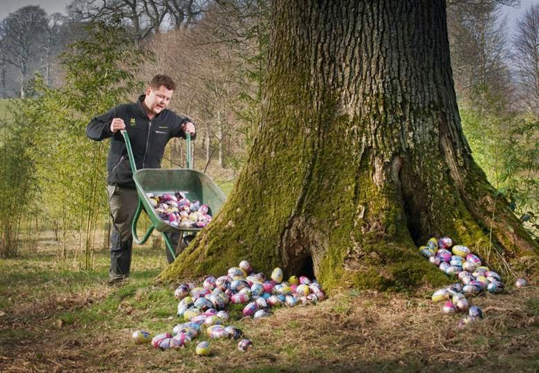 Hiding Easter Eggs under a tree