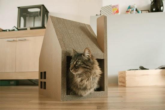 Krabhuis - casa gatos