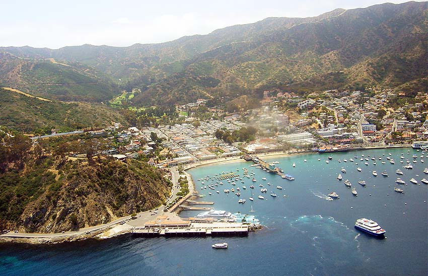 A bit of bees knees catalina island for Catalina bay