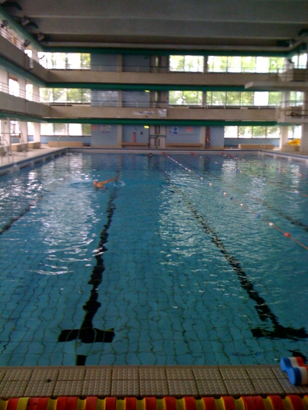 swimming round london shadders