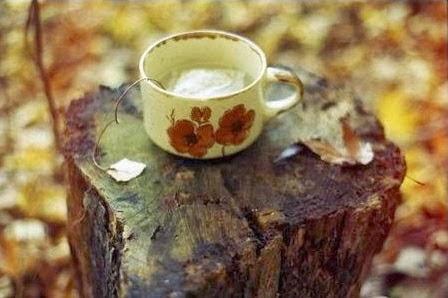 ¿Alguien gusta una taza de té?