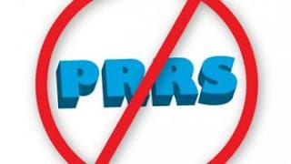 Quản lý nhằm kiểm soát PRRS.