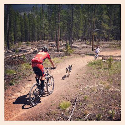 Mountain biking in Breckenridge