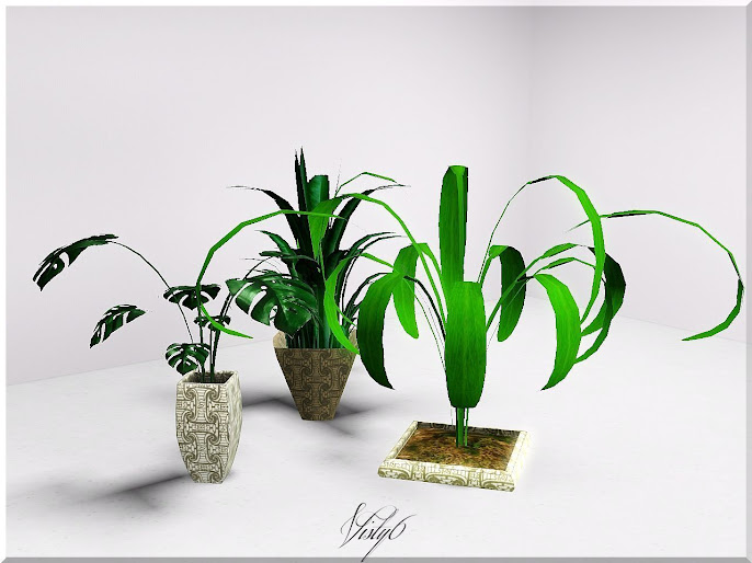 #8 Indoor Plant Decoration Ideas