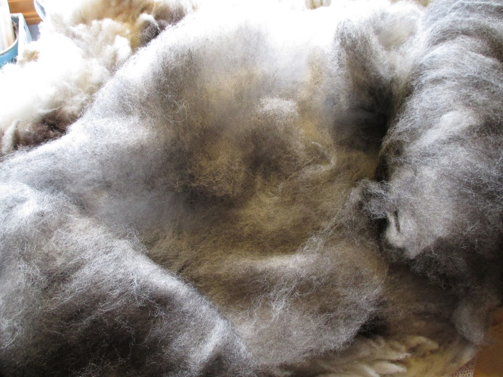 how to clean a sheep wool duster