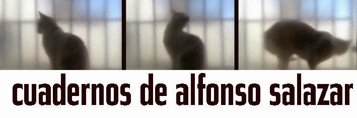alfonsosalazar